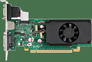 GeForce 310 OEM